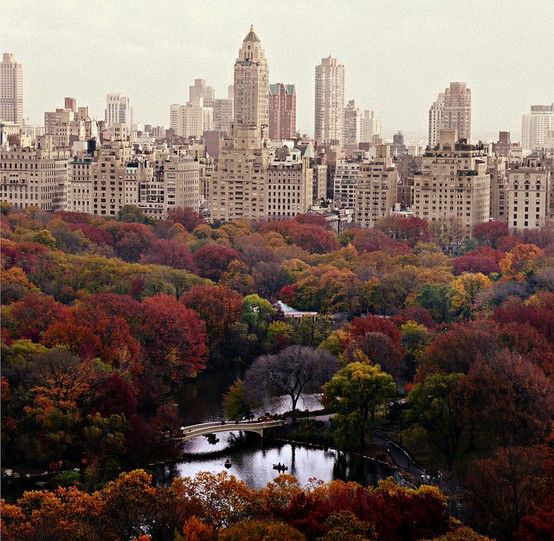 New York City in Autumn
